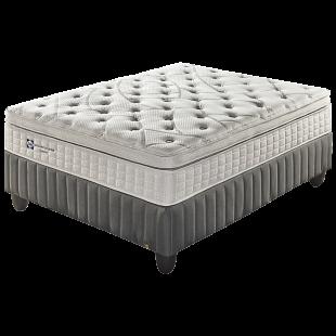 Sealy Celebration Plush King Bed Set Standard Length