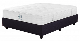 Forty Winks Synergy Plush Queen Bed Set Standard Length