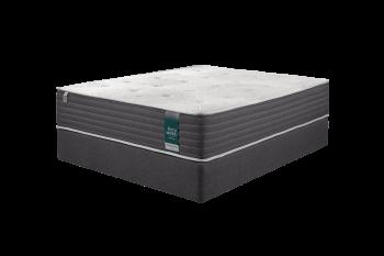 Forty Winks MegaSleep Firm Queen Bed Set Standard Length